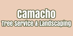 Camacho Tree Service & Landscaping